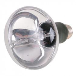 Spectroline BLE-50S/MR, UV výbojka